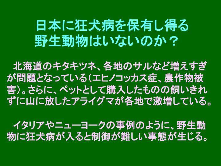 日本に狂犬病を保有し得る野生動物はいないのか?