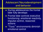 adolescent neurodevelopment and behavior