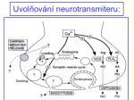 uvol ov n neurotransmiteru
