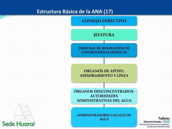Estructura Básica de la ANA (17)