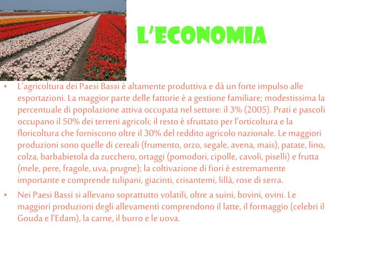 L'economia