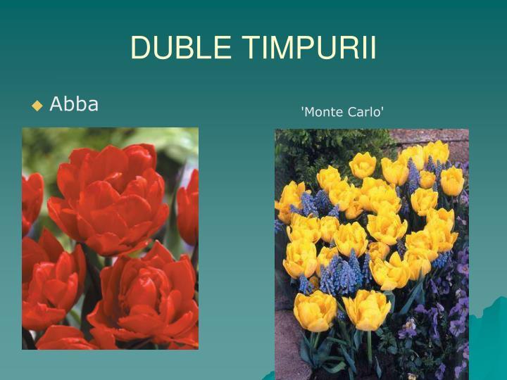DUBLE TIMPURII