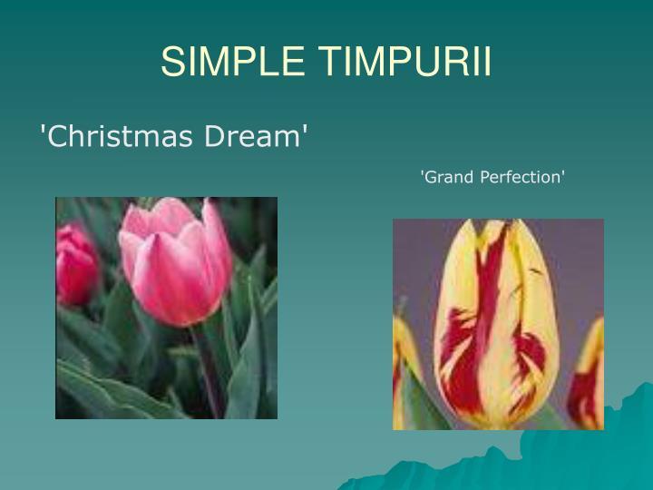SIMPLE TIMPURII