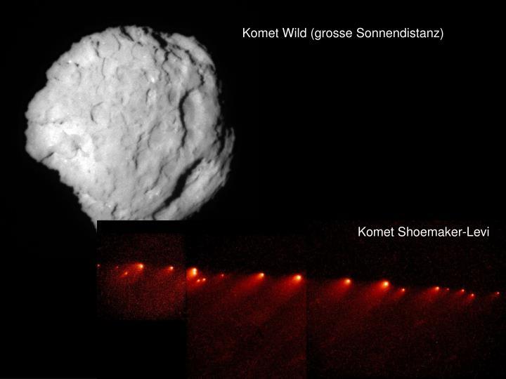 Komet Wild (grosse Sonnendistanz)