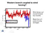 western branch coupled to wind forcing2