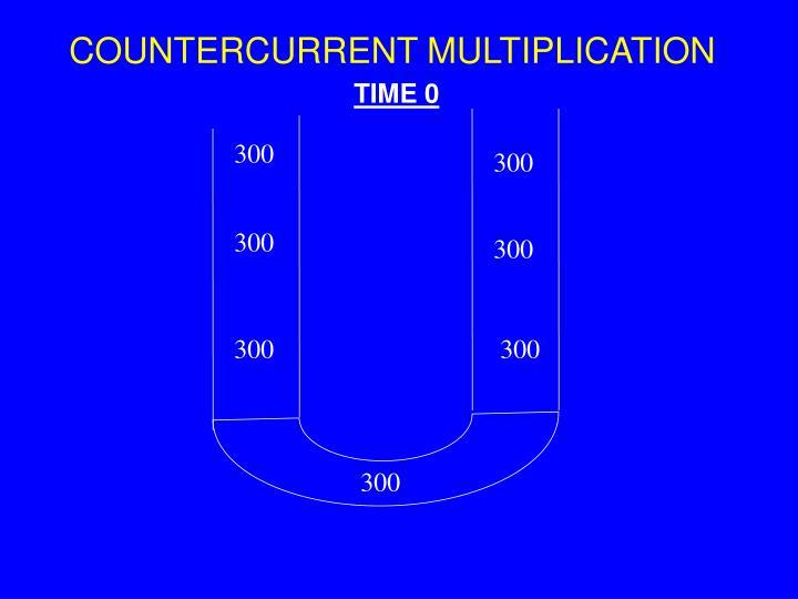 Countercurrent multiplication1