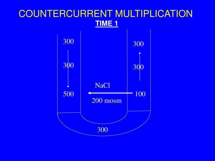 Countercurrent multiplication2