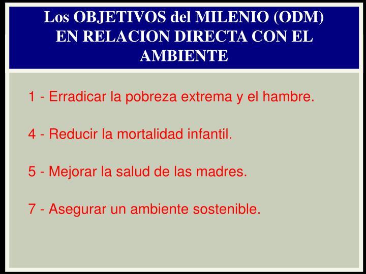 Los OBJETIVOS del MILENIO (ODM)