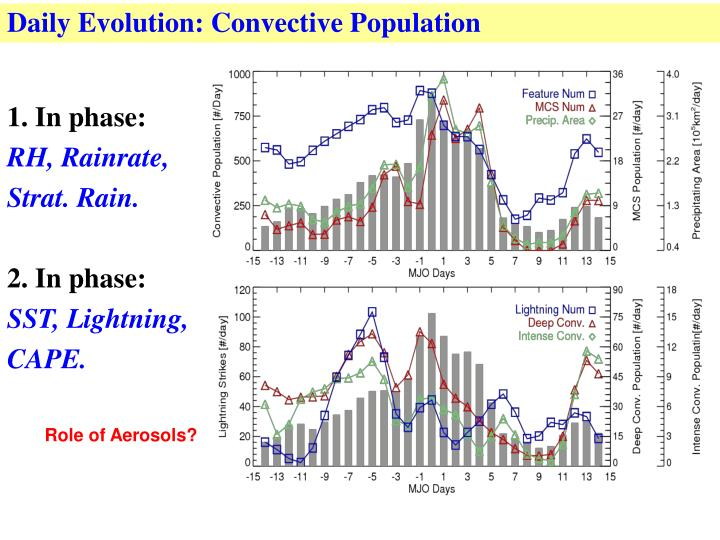 Daily Evolution: Convective Population