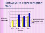 pathways to representation maori