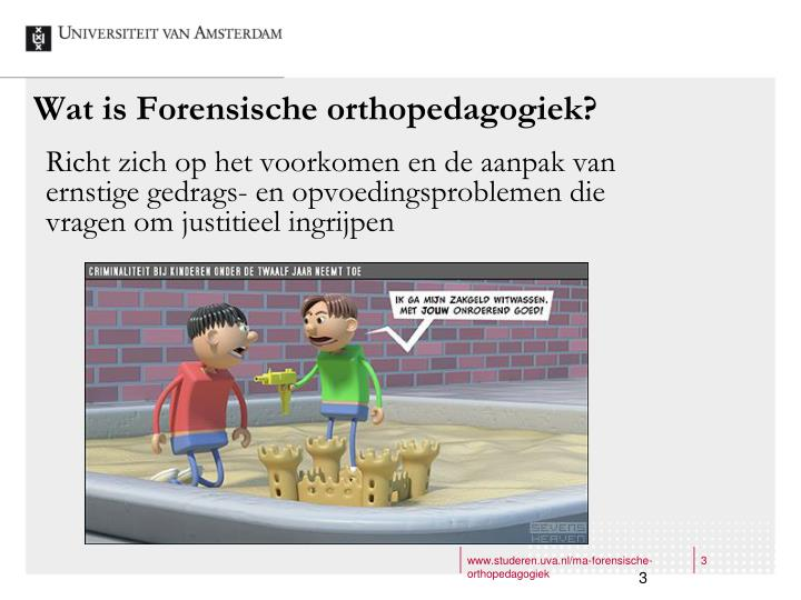 Wat is forensische orthopedagogiek