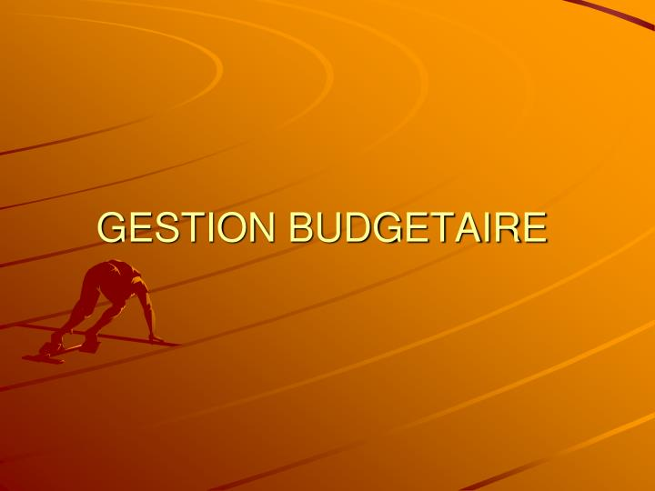 gestion budgetaire n.