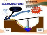 clean audit 2014