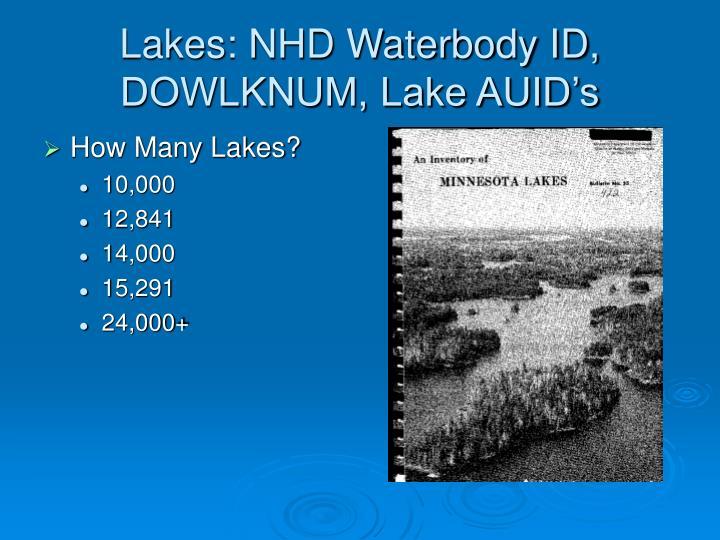 Lakes: NHD Waterbody ID, DOWLKNUM, Lake AUID's