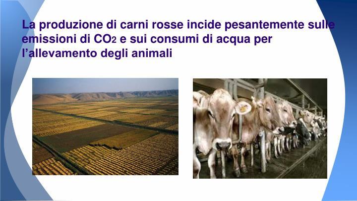 La produzione di carni rosse incide pesantemente sulle emissioni di CO