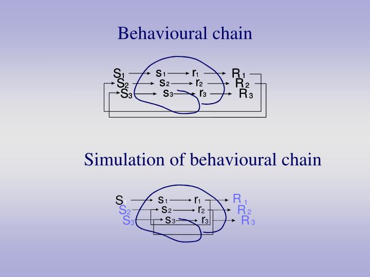 Behavioural chain