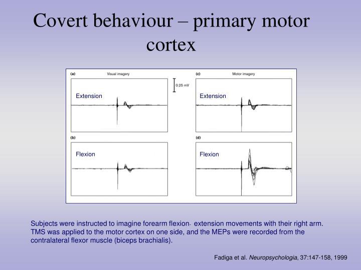 Covert behaviour – primary motor cortex