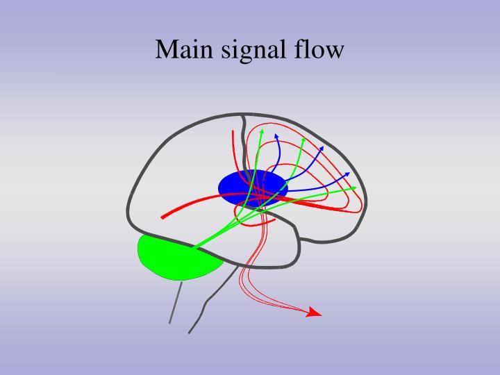 Main signal flow