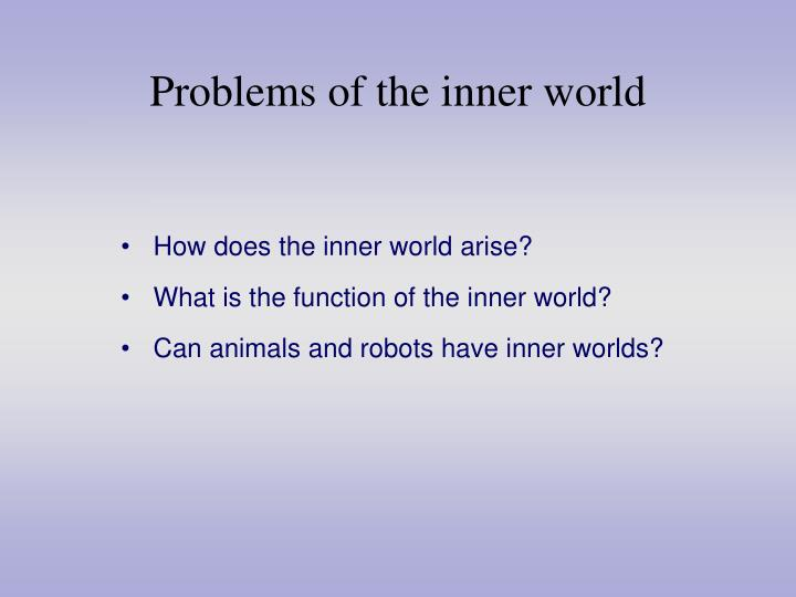 Problems of the inner world