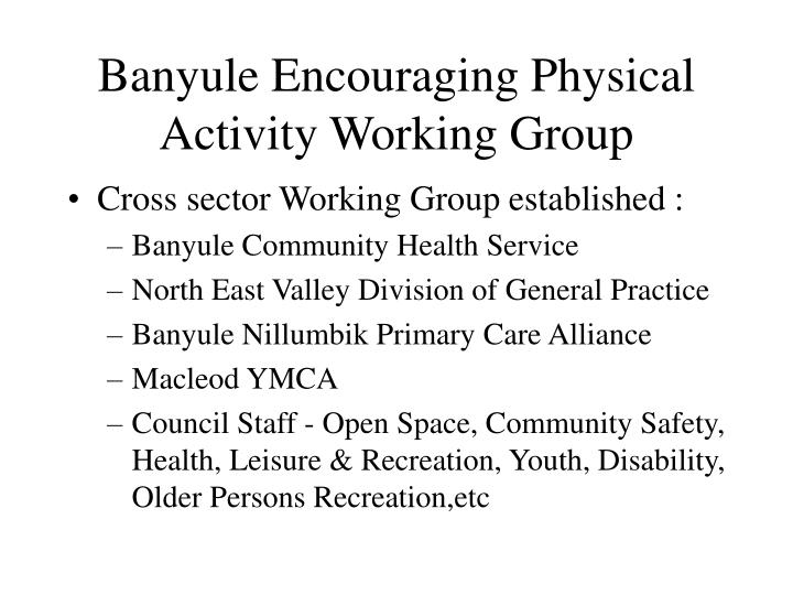 Banyule encouraging physical activity working group