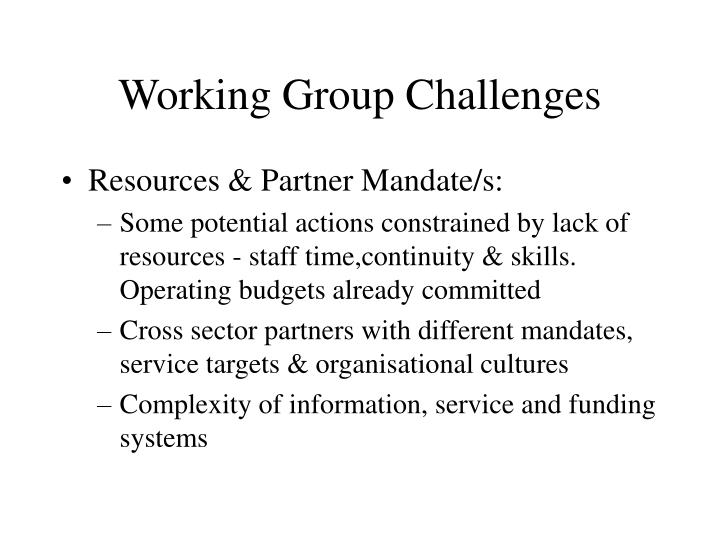 Working Group Challenges