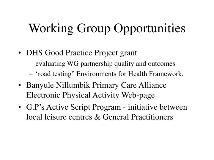 Working Group Opportunities
