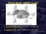 partial mesh nbma model