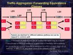 traffic aggregates forwarding equivalence classes