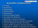 scientific collaboration