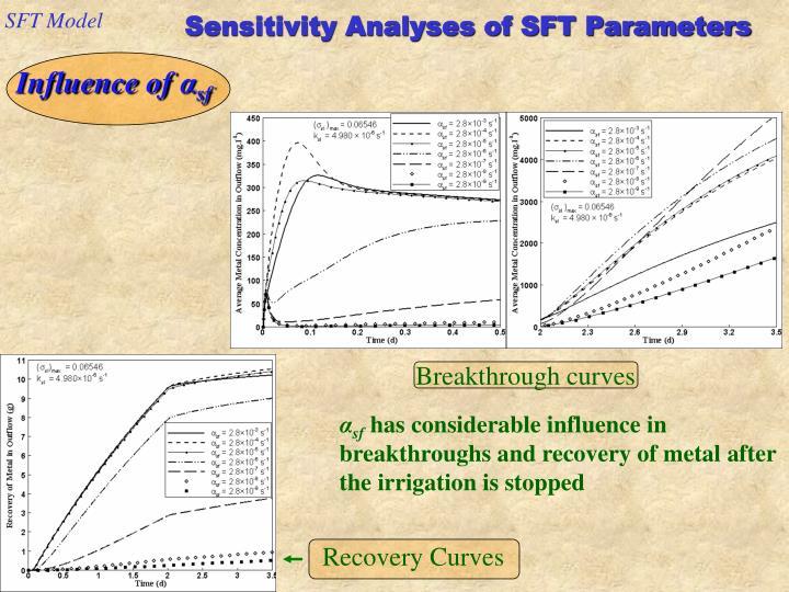 SFT Model