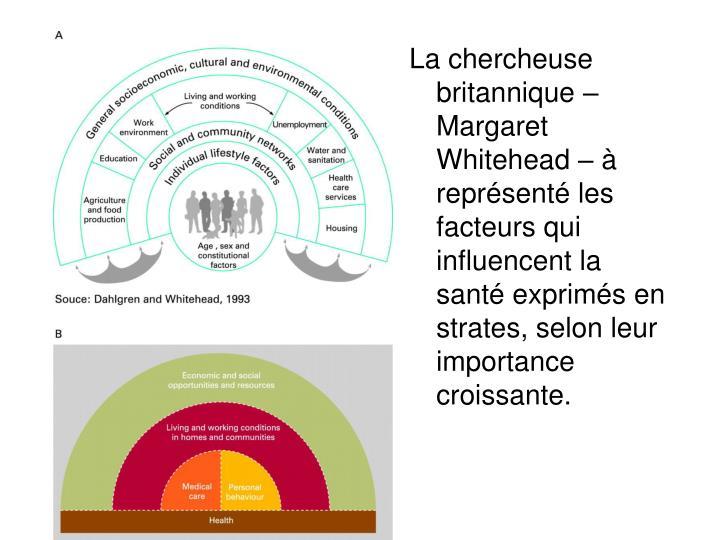 La chercheuse britannique – Margaret Whitehead – à représenté les facteurs qui influencent la santé exprimés en strates, selon leur importance croissante.