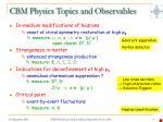 cbm physics topics and observables