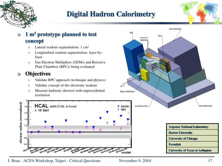 Digital Hadron Calorimetry
