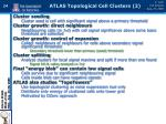 atlas topological cell clusters 2
