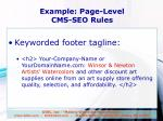 example page level cms seo rules1
