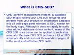 what is cms seo