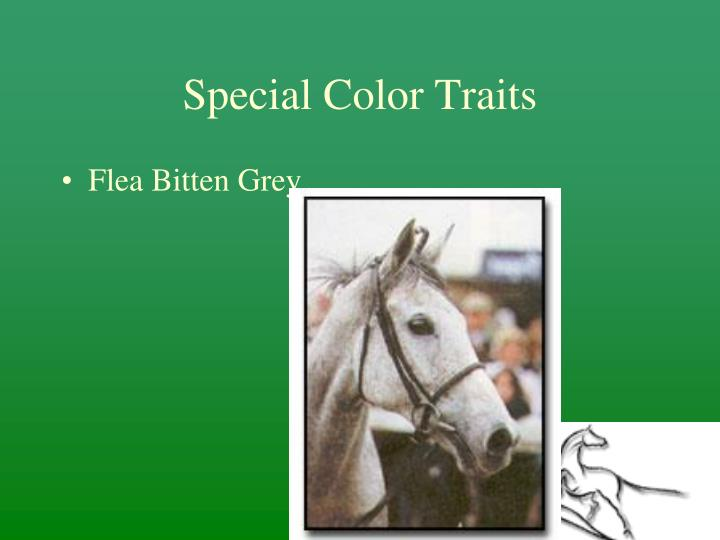 Special Color Traits