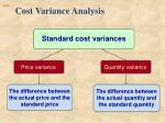 cost variance analysis