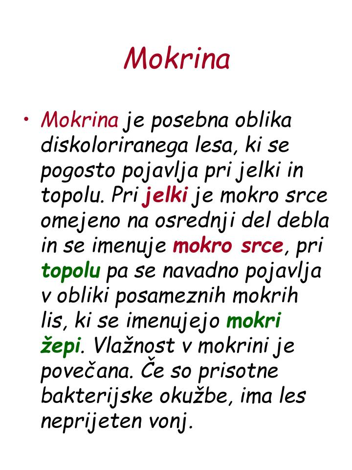 Mokrina