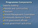 programme components