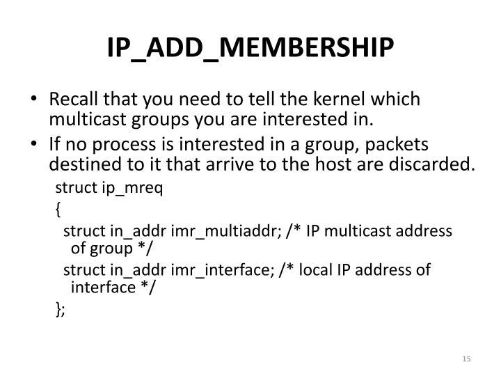 IP_ADD_MEMBERSHIP