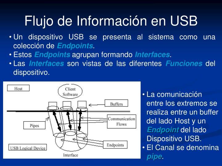 Flujo de Información en USB