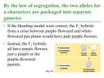 by the law of segregation the two alleles for a characters are packaged into separate gametes