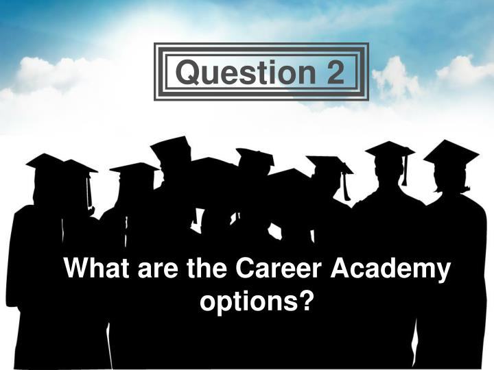 What are the Career Academy options?