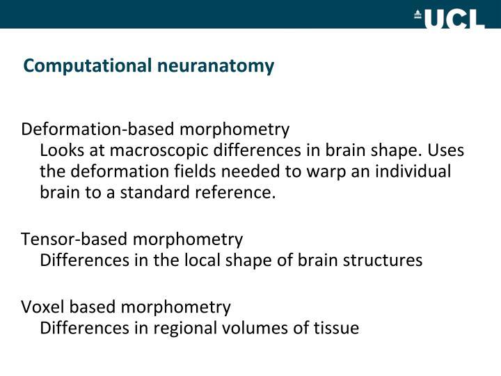 Computational neuranatomy