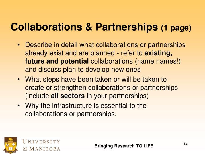 Collaborations & Partnerships