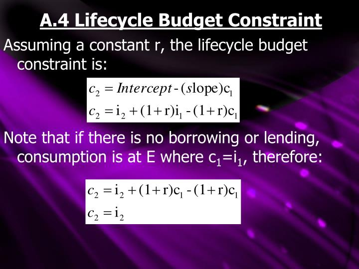 A.4 Lifecycle Budget Constraint