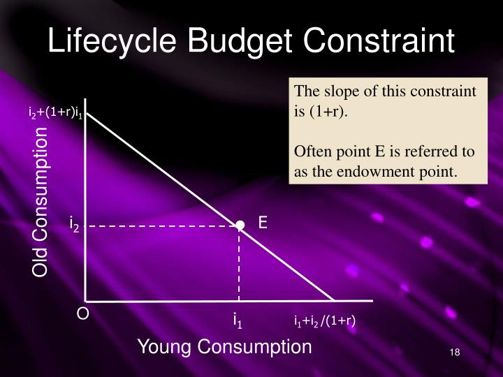 Lifecycle Budget Constraint