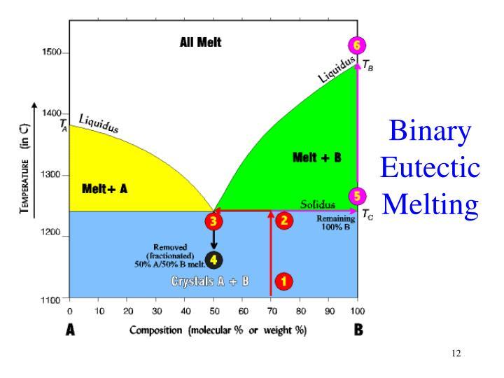 Binary Eutectic Melting