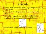 adrenals